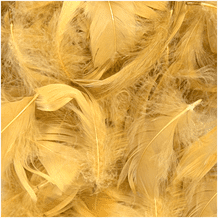 Gold Feathers for Balloons - Eleganza 50g Bag 1PK