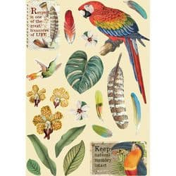 Stamperia - Wooden Shapes - A5 Coloured Frame – Amazonia Parrot