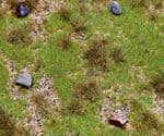 Faller 180476  PREMIUM Countryside Section Meadow with Boulders