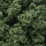 WFC136 Woodland Scenics: Underbrush - Medium Green (18 cu. in. bag)