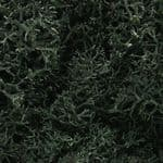 WL164 Woodland Scenics: Lichen - Dark Green (1 1/2 qt./82 cu. in. )