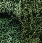 WL167 Woodland Scenics: Lichen - Light Green Mix (3 qt./165 cu. in. )